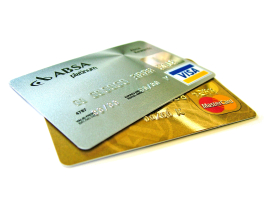 Image of Mastercard and Visa. PCvet is able to accept payment by major credit cards.